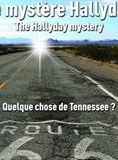 Télécharger Le Mystère Hallyday French dvdrip