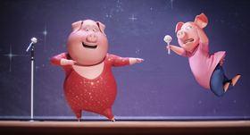 Sing - Quem Canta Seus Males Espanta - Foto