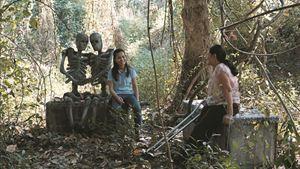 Cemitério do Esplendor - Foto