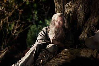 Foto - FILM - Hobbit: An Unexpected Journey : 119089