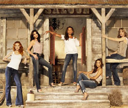Desperate Housewives S1E2 [FR]