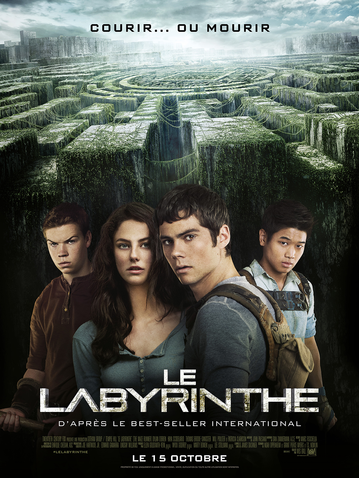 Telecharger Le Labyrinthe  TRUEFRENCH DVDRIP MD Gratuitement