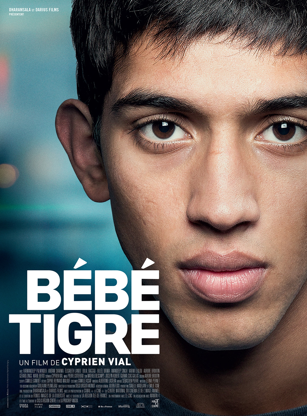 Bébé Tigre (2015)