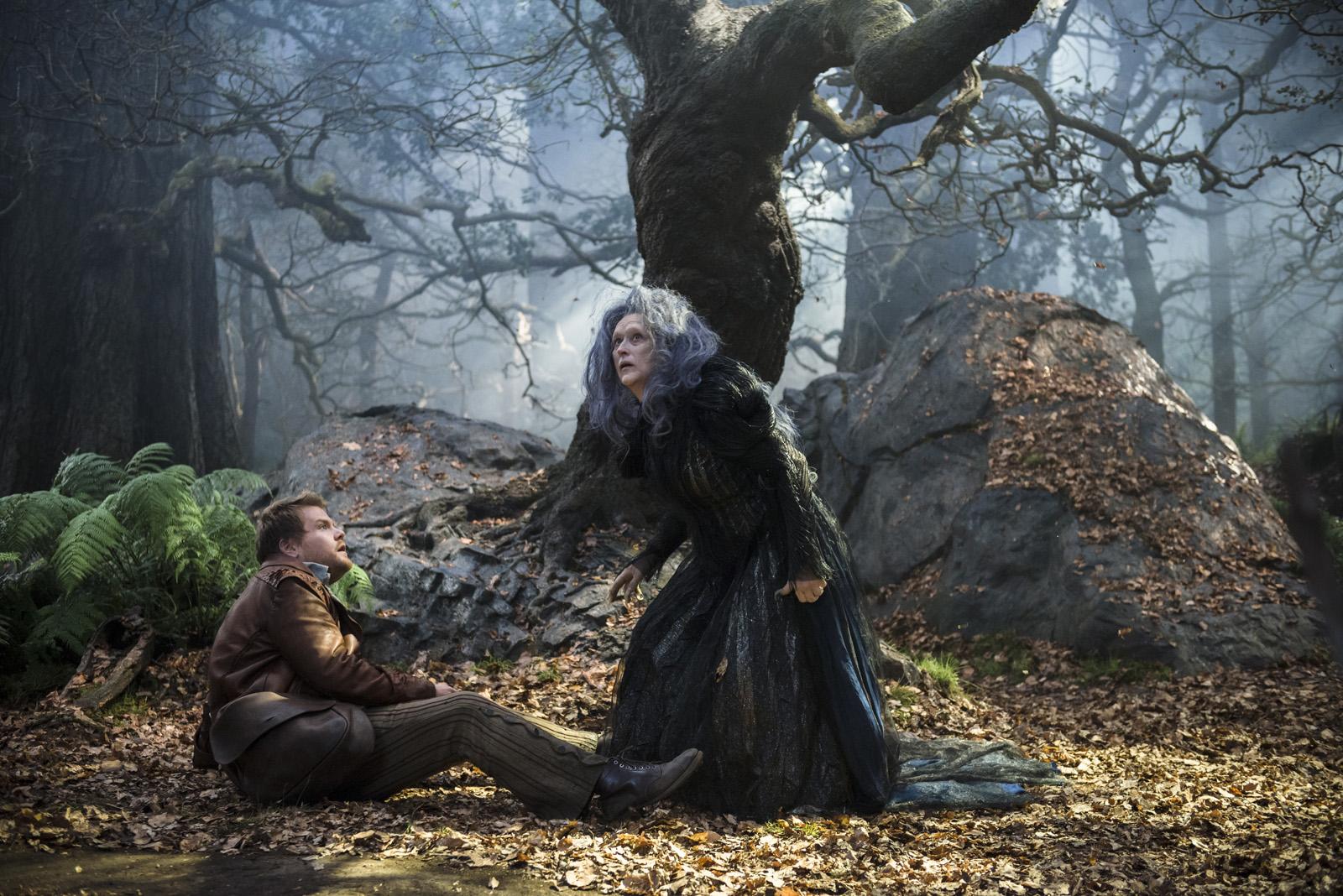 Into the Woods – Promenons nous dans les bois