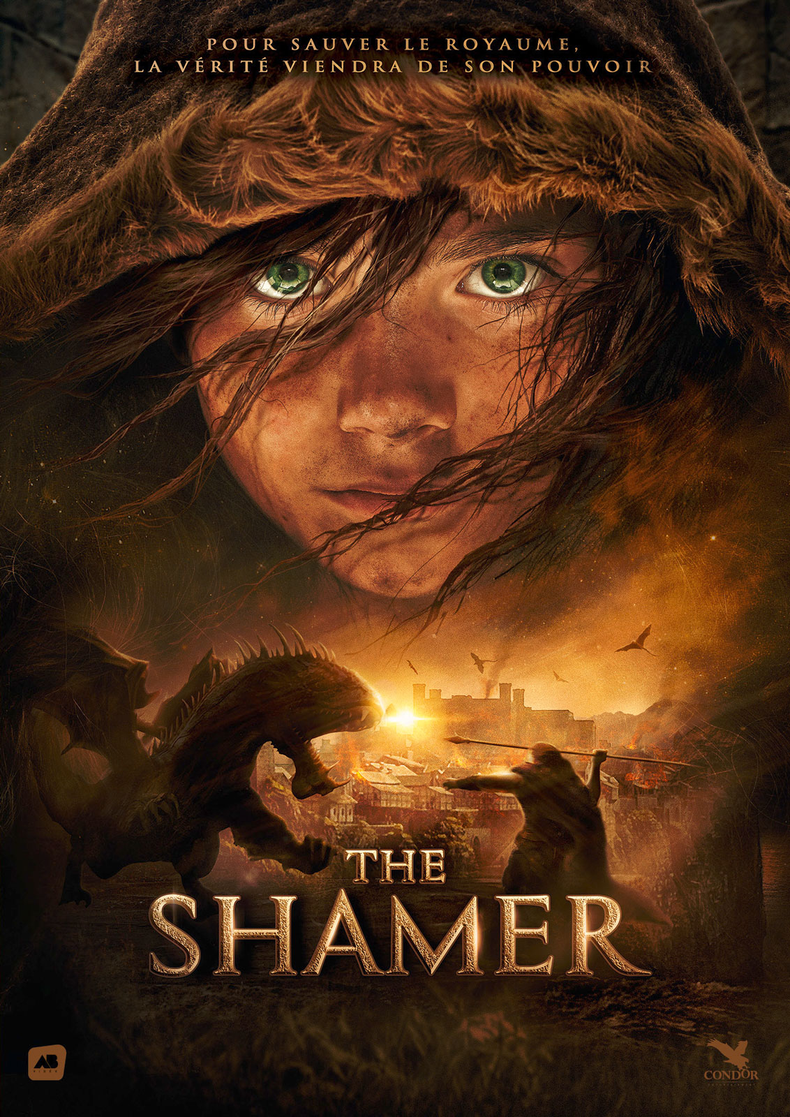 The Shamer TRUEFRENCH BDRiP