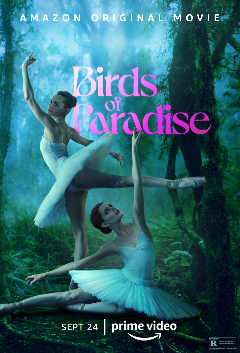 Birds of Paradise streaming complet