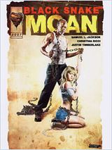 Telecharger Black Snake Moan [Dvdrip] bdrip