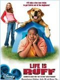 Telecharger Calvin et Tyco  (Life is Ruff ) Dvdrip Uptobox 1fichier
