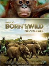 Born to Be Wild FRENCH BDRIP AC3 2011