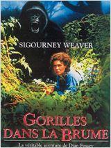 Les films de la semaine du 24 au 30 décembre 2011 sur vos petits écrans Affiche