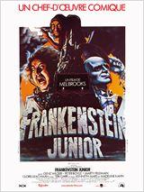 Télécharger Frankenstein Junior Dvdrip fr