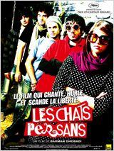 Telecharger Les Chats persans Dvdrip Uptobox 1fichier