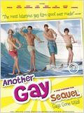 Another Gay Sequel : Gays gone wild ! en streaming