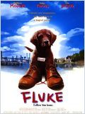 Regarder le film Fluke en streaming VF