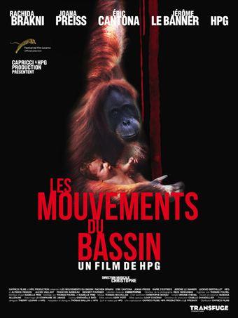 Les Mouvements du bassin   DVDRip   2012