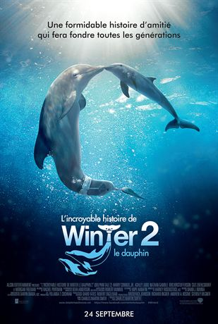 L'Incroyable Histoire de Winter le dauphin 2 | R6 | 2014