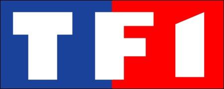 Les+s%c3%a9ries+de+TF1+pour+l