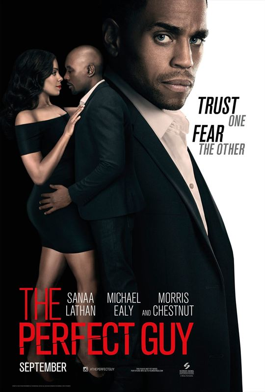 The Perfect Guy [FRENCH BDRiP]