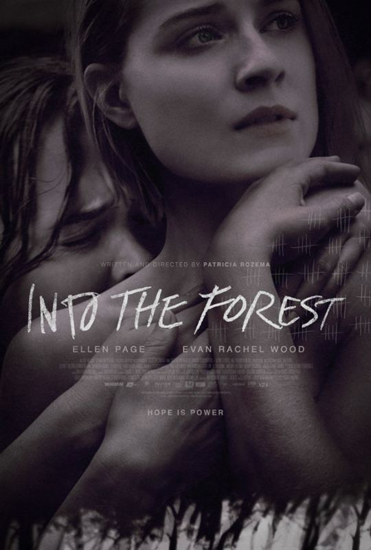 Into the Forest [VOSTFR HDRiP]