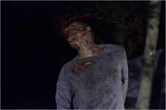 The Walking Dead : Photo