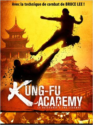 Kung-Fu Academy  (2013) [1CD] [FRENCH] [DVDRIP] [MULTI]