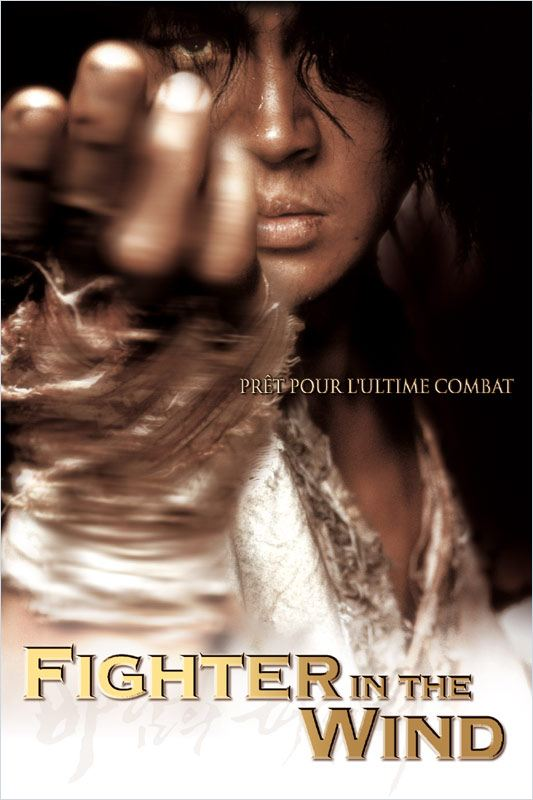 Fighter in the wind streaming vf