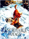 L&#039;incroyable voyage DVDRIP FR Megaupload