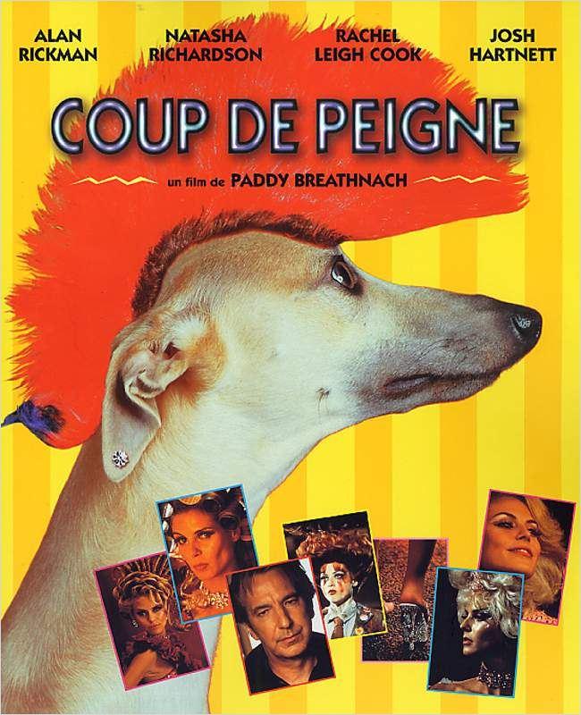 Coup.De.Peigne.FRENCH.DVDRiP.XViD.AC3-HuSh [TB]