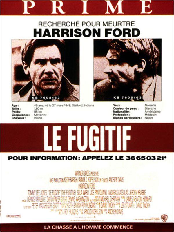 Le Fugitif [TRUEFRENCH] [Blu-Ray 720p] [MULTI]