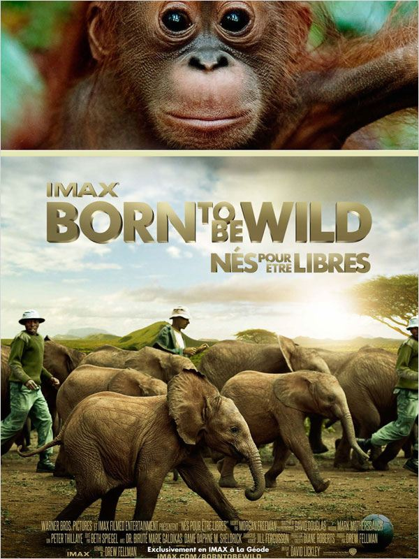 Born to Be Wild [BDRIP] [FRENCH-AC3] [RG] (Exclue)