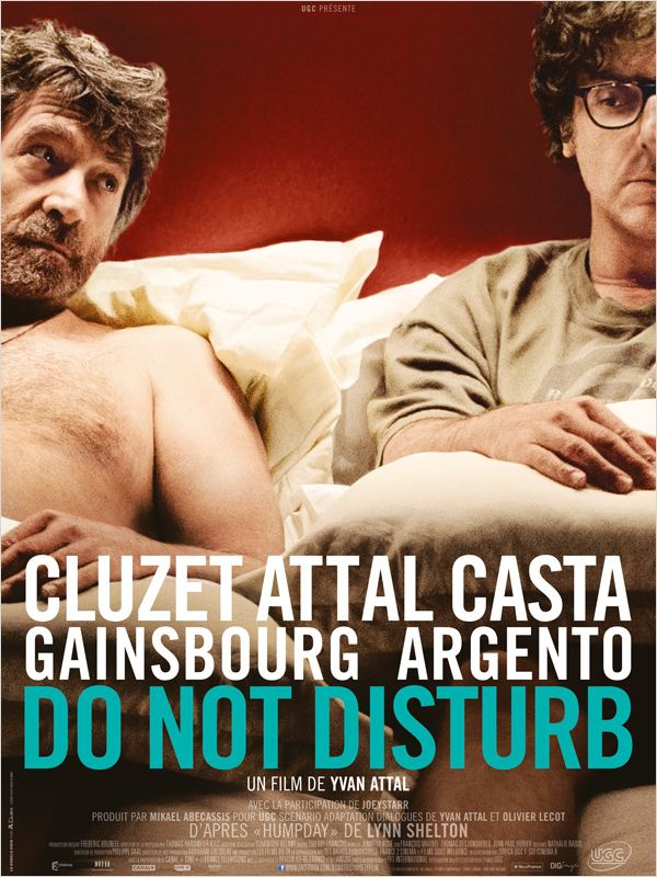 Do Not Disturb [FRENCH][DVD-R]