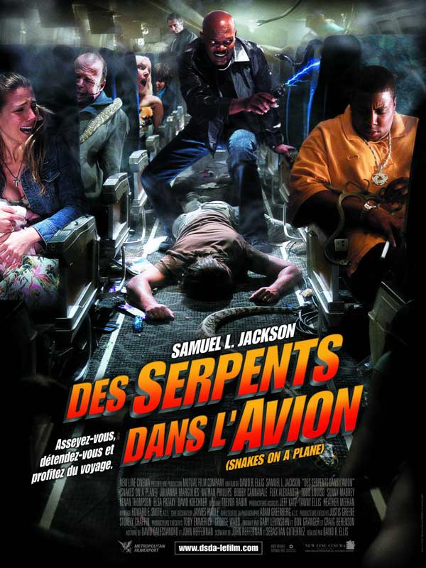 Des serpents dans l'avion 18655597