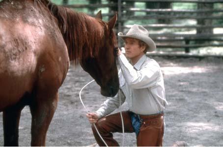 L'Homme qui murmurait a l'oreille des chevaux