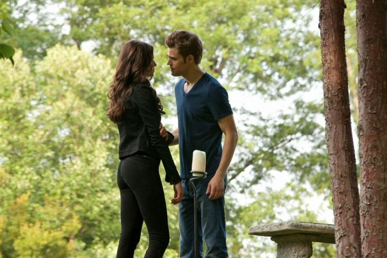 The Vampire Diaries - Page 4 19493397