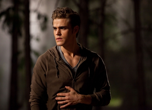 THE VAMPIRE DIARIES - Page 2 19505338