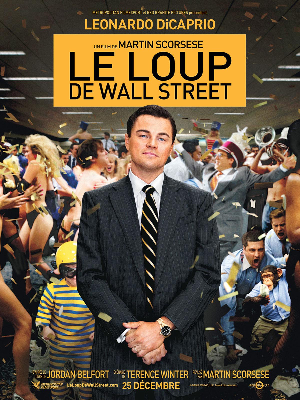 Le Loup de Wall Street [TRUEFRENCH] dvdrip