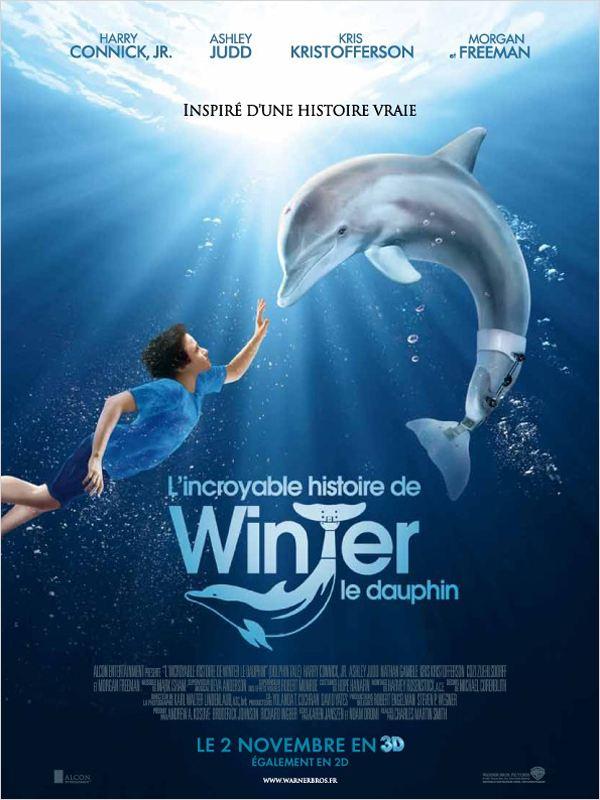 L'Incroyable histoire de Winter le dauphin ddl